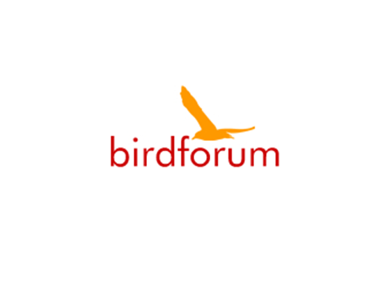 Free Bird Forum Shop Promo & Voucher Codes -