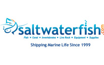 Saltwaterfish Coupon & Deals