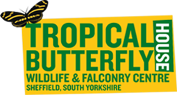 Tropical Butterfly House Discount Codes & Deals
