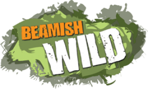 Beamish Wild Discount Codes & Deals