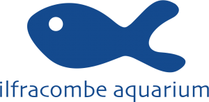 Ilfracombe Aquarium Discount Codes & Deals