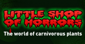 Little Shop of Horrors Discount Codes & Deals