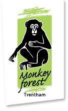 Trentham Monkey Forest Discount Codes & Deals