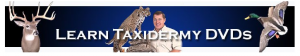 Taxidermy 101 Discount Codes & Deals