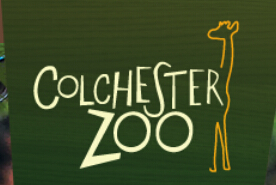 Colchester Zoo Discount Code