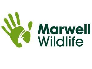 Marwell Wildlife Discount Code